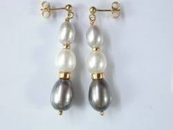 65060 - Grey & White Cultured Pearl Drop Earrings in Gold