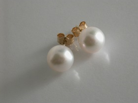67205 - 8.5mm Akoya Cultured Pearl Earrings in 9ct Gold