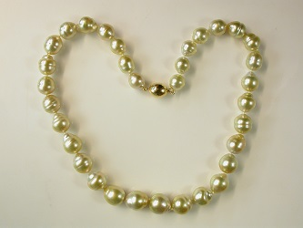 70031 - Stunning Golden South Sea Pearls with 18ct  Yellow gold safety clasp