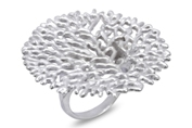 66512 - Artistic Ring in Sterling Silver